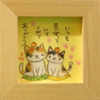 三毛猫 -10