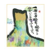 御木 幽石 ミニ色紙(寸松庵)-373
